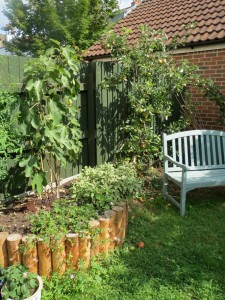 A town garden reinvention by Tim Lawrence