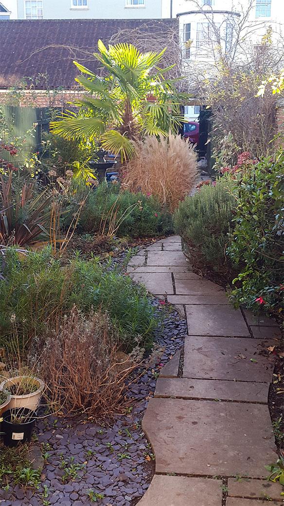 Winding path between flower beds